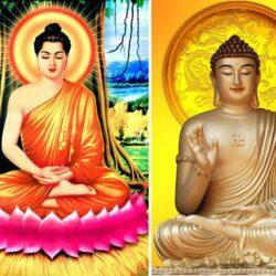 Phân biệt tượng Phật Thích Ca và Phật A Di Đà đơn giản, chính xác